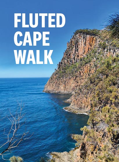 Fluted Cape Walk